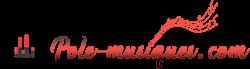 Pole-musiques.com: le blog de la musique