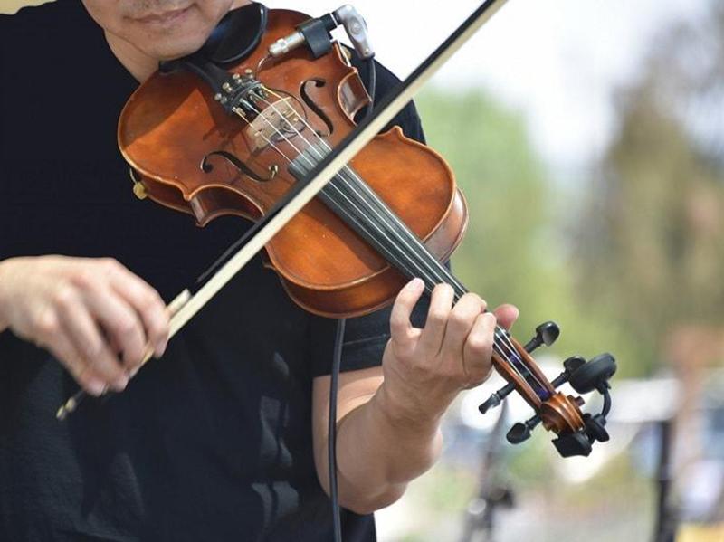 Le monde du violon
